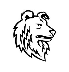 shetland sheepdog or collie mascot black vector image
