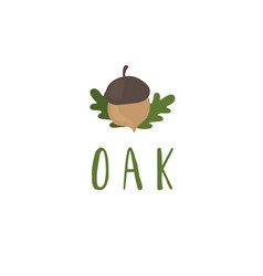 template logo design with oak tree and acorn vector image