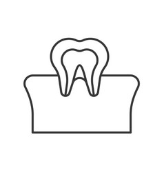 tooth and gum outline icon dental care set vector image