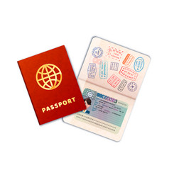 two bright passports with eu visa on white vector image