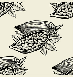 cocoa beans and leaves vector image