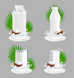 coconut milk package realistic mockup set vector image