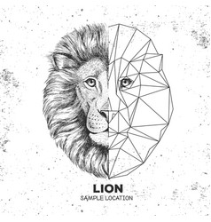 Hipster animal realistic and polygonal lion face vector