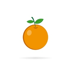 Orange logo design template vector