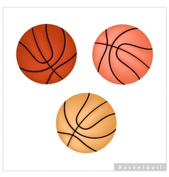 Set of Basketball Ball on White Background vector image