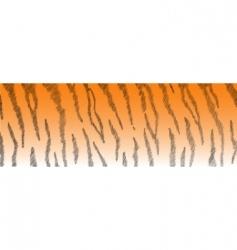 tiger fur vector image