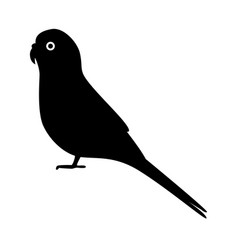 budgerigar parrot silhouette icon in flat style vector image
