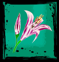 Abstract green and colored lily vector