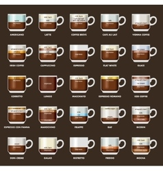 Infographic with coffee types vector