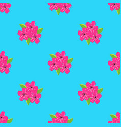 pattern with flowers of cherry vector image