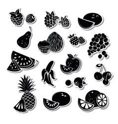 Retro fruit set vector