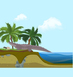 terrarium island banner vector image