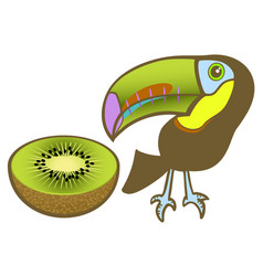 Toucan and kiwi vector