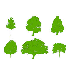 Tree green silhouettes oak poplar red maple vector