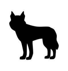 Flat husky pet vector image