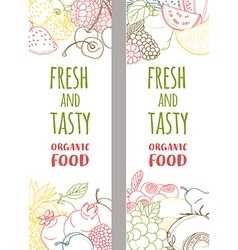 Fresh organic spring summer fruits and vegetables vector image
