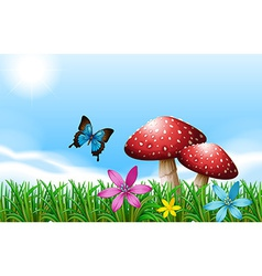 A butterfly near the red mushrooms vector image