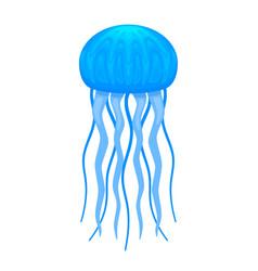 blue medusa cartoon vector image