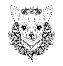 chihuahua graphic dog abstract vector image