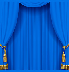 light blue curtain with gold tassels vector image
