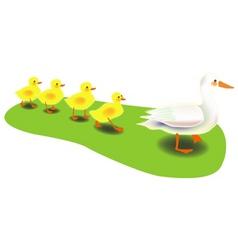 Mother duck vector