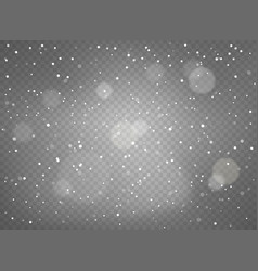 winter snowfall background objects on transparent vector image