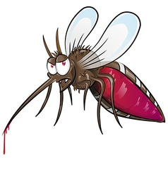 mosquito cartoon vector image