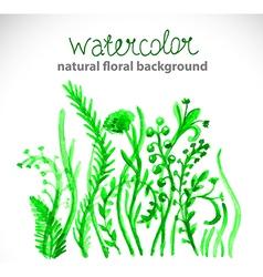 Watercolor beautiful green background vector image vector image