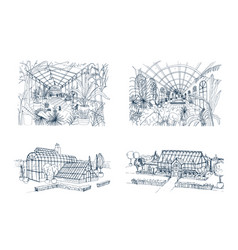 bundle of freehand drawings of greenhouses full of vector image