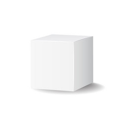Blank white carton 3d box icon box package mockup vector