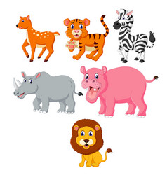 collection of the wild animals vector image