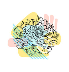 hand drawn flower with colorful abstract backdrop vector image