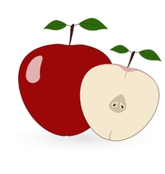 Red apple - vector image