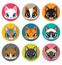 Set of cute cats vector