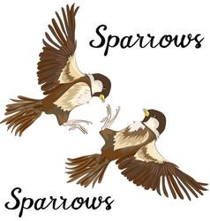 Sparrows in flight design element vector