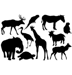 set of animal silhouettes vector image