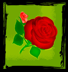Abstract green and red rose vector