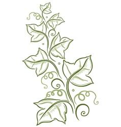 Green leaves tendril vector