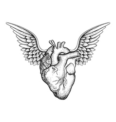 Hand drawn elegant heart with wings black sketch vector