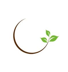Organic leaf logo vector
