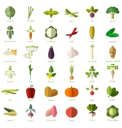 Set of vegetable flat icons vector