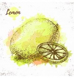 Watercolor lemon sketch vector image