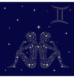 Zodiac sign Gemini on the starry sky vector image