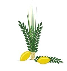 Sukkot - Jewish holiday vector image