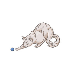 cute white cat pet animal playng with a ball hand vector image