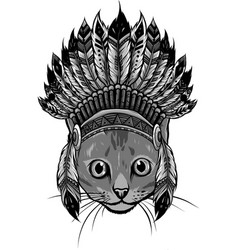 design head cat with indian hat vector image