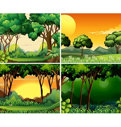 Forest scene vector image