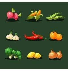 Fruits and Vegetables Organic Food Icons vector image