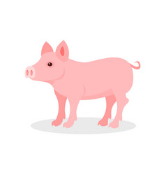 Little piglet farm animal on vector