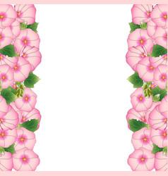 Pink alcea rosea border - hollyhocks vector